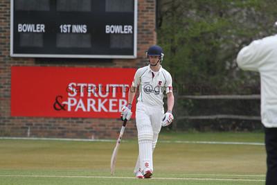 Cricket Adults 2013