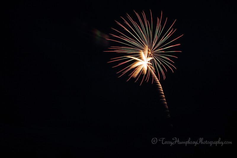 2019 Paradise Fireworks-25.jpg