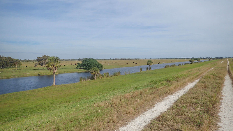 Ranches and marshes along Indian Prairie
