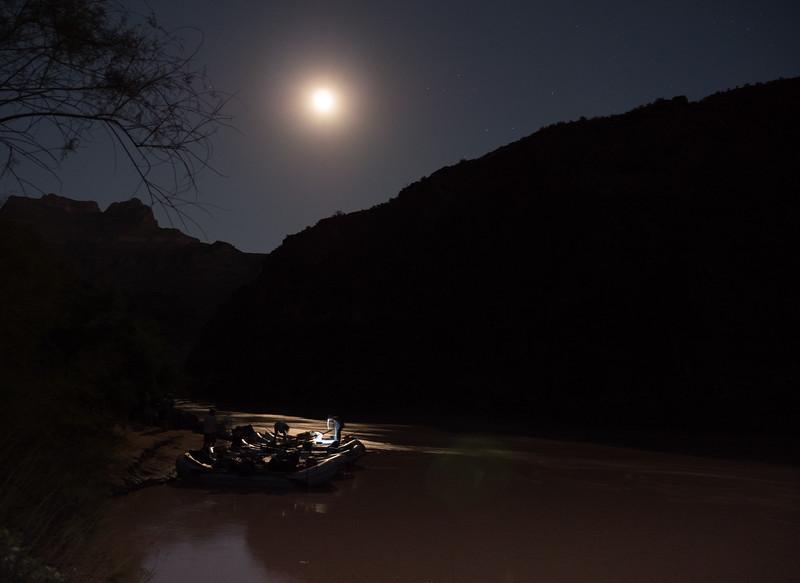 Grand Canyon-276.jpg