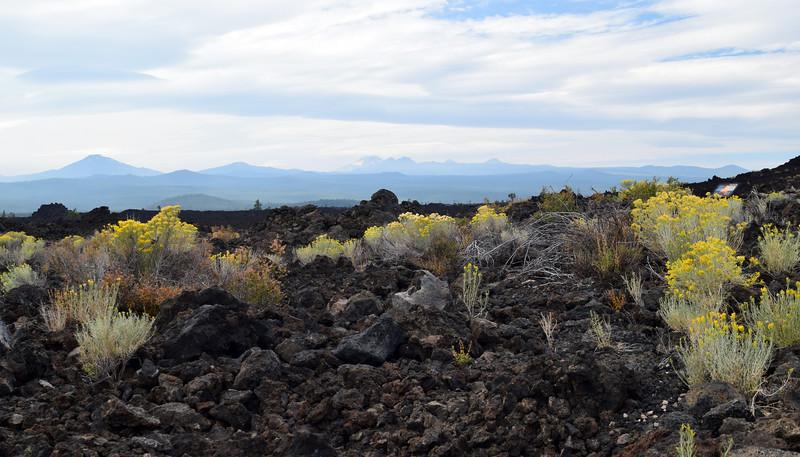 Newberry Volcanic (14).jpg