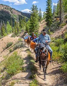 Buster's Elk Hunt Creede 2019