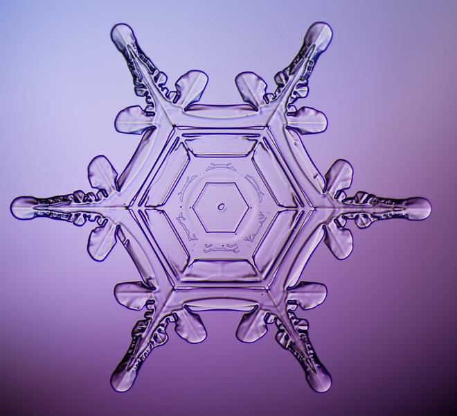 snowflake-0249-Edit.jpg
