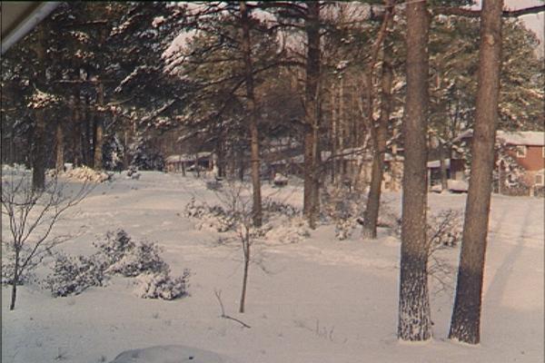 1993 Atlanta Snow