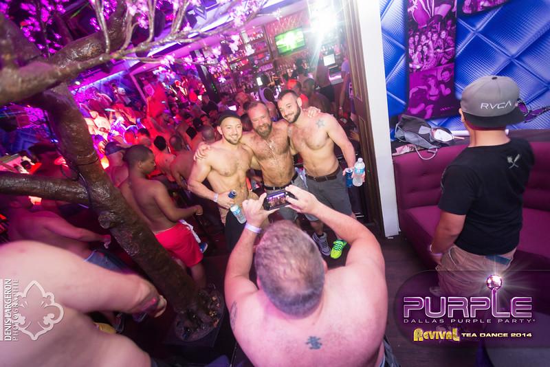 2014-05-11_purple04_684-3257798625-O.jpg