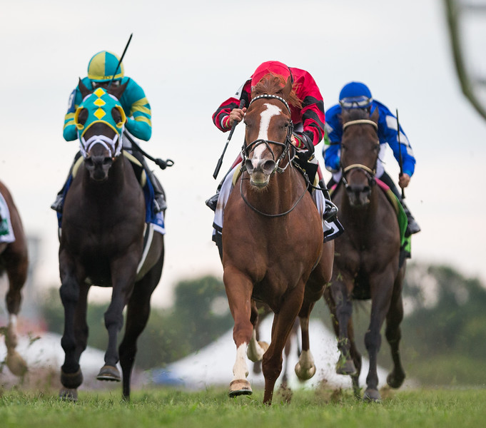 Proforma (Munnings), Joe Bravo up, wins the $500,000 G3 Kentucky Downs Turf Sprint Stakes for owner DARRS Inc and trainer Michael Stidham in a TRACK RECORD TIME of 1:15.72 for 6 ½ furlongs.