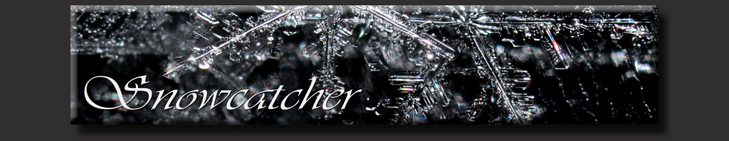 Snowcatcher