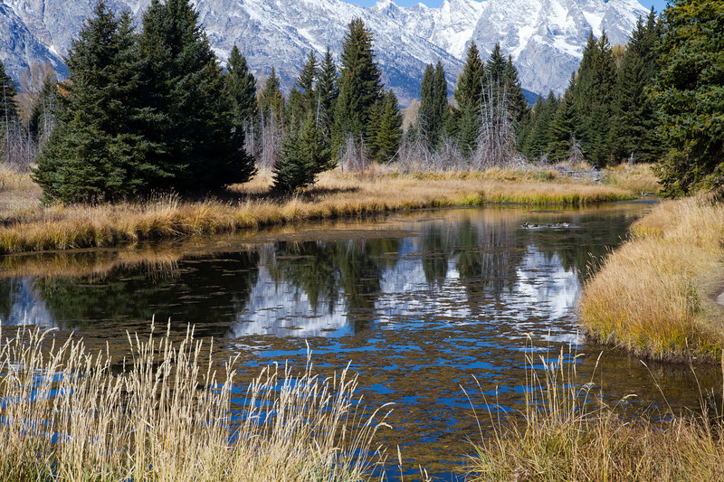 Grand Teton Schwabacheas Landing