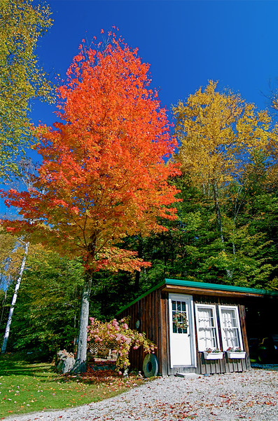 Shed, Goffstown NH