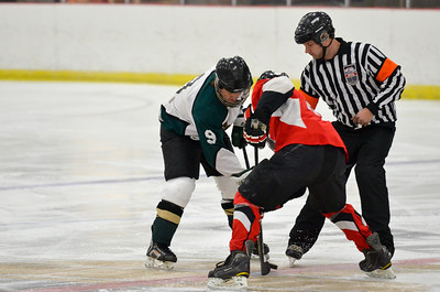 2012-13 Hockey