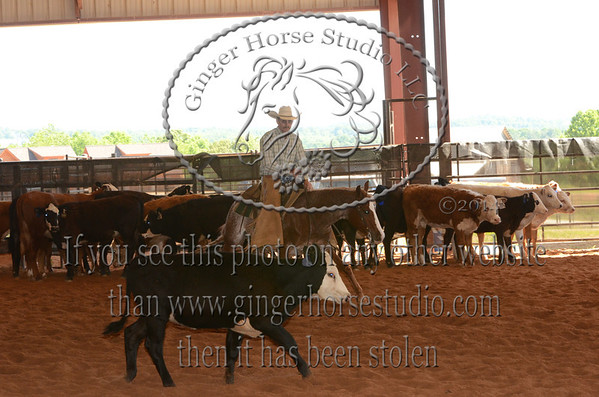 High Noon Cutting Horse Show May 24, 2014