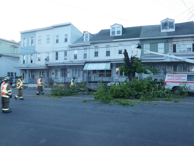 mahanoy city tree incident 5-8-2010 041.JPG