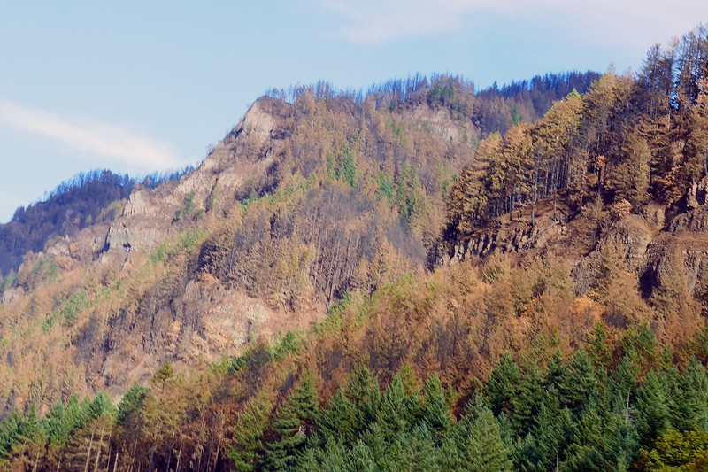 Eagle Creek Fire Damage  259.jpg