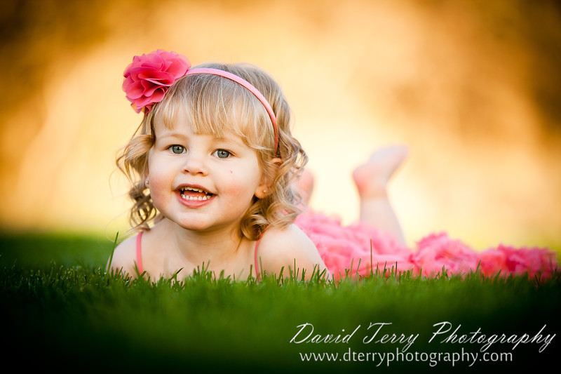 David Terry Photography - Family Portraits in the Orchard