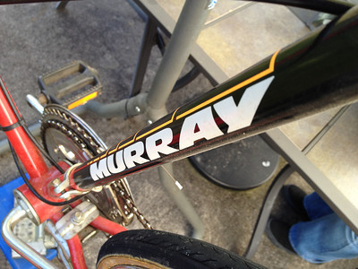 Murray Rescue