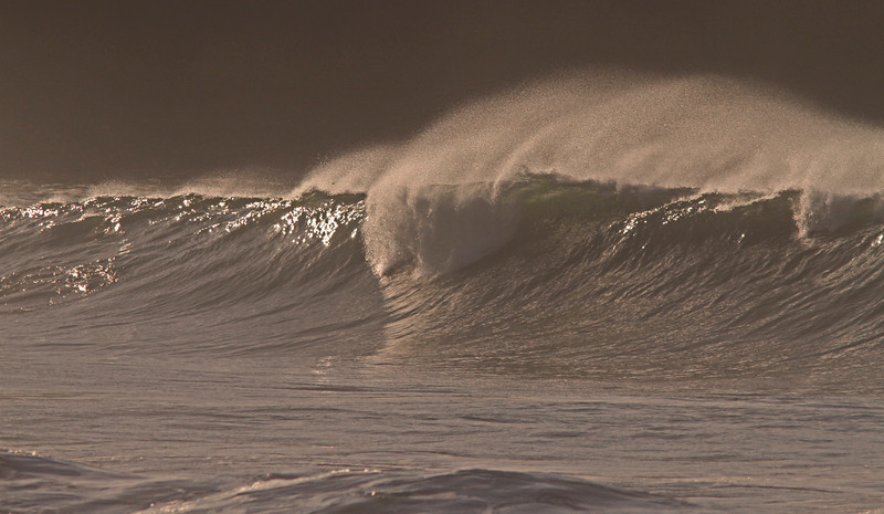 Rodeo Ten Foot November Swell