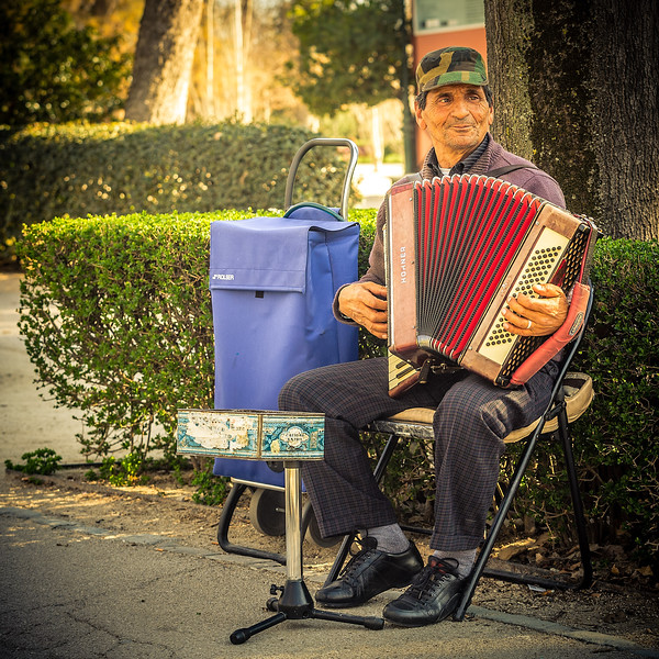 Play me a song you're the accordion man