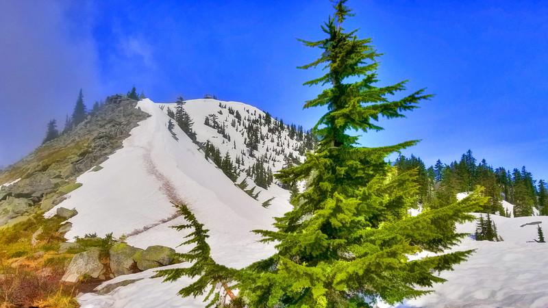 Granite Mountain, June 2020