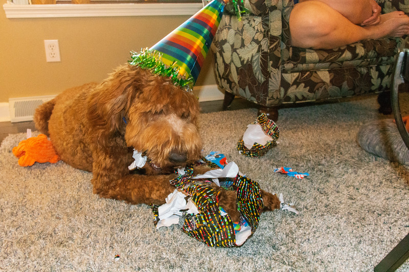Calvin-Birthday-1year-presents.jpg