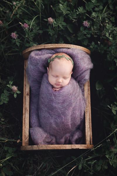Autumn-Newborn-high-Resolution370A0250-Edit.jpg