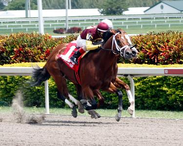 2012 Florida Derby Day