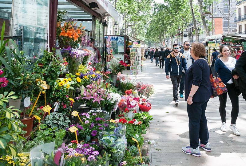 Barcelona: Flowers on Las Ramblas