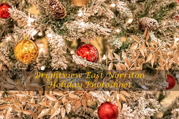 Brightview East Norriton Holiday Photoshoot
