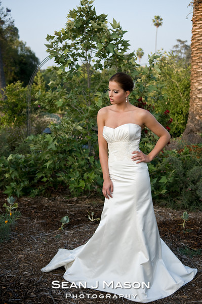 The Ivory Suite Gowns