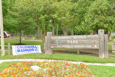 Coldwell Banker North Shore Picnic 2014