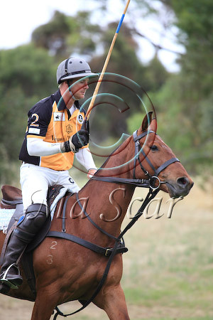 2010 POLO IN THE CITY-ADELAIDE