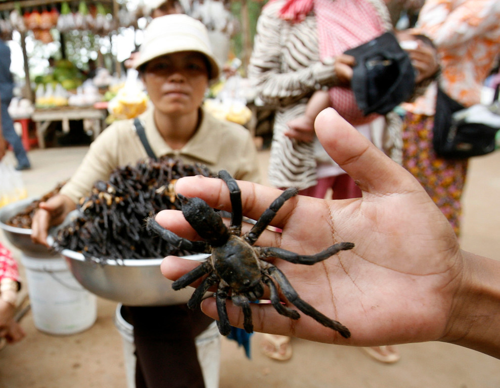. A vendor selling deep-fried spiders poses with a spider as she waits for customers at bus station at Skun, Kampong Cham province, east of Phnom Penh March 14 ,2009. It costs $2 for 10 deep-fried spiders, which come seasoned with garlic. The fist-sized arachnids are crunchy on the outside and taste like cold, gooey chicken on the inside. Picture taken March 14, 2009. REUTERS/Chor Sokunthea