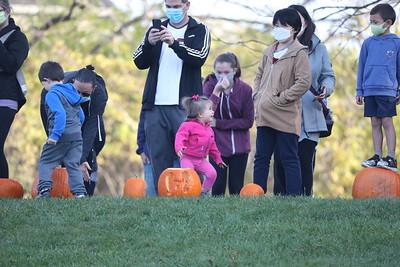 Great Pumpkin Roll 2020 @ Mill Pond Park