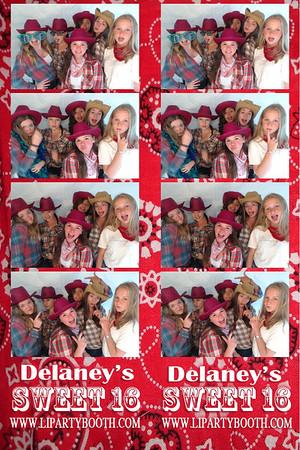 Delaney's Sweet 16