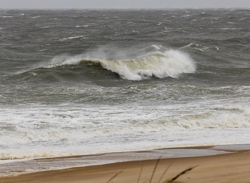 190906_183_MD_OC_Surf-1.jpg