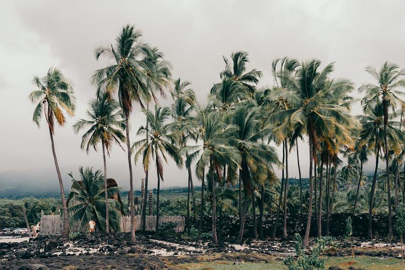 Hawaii20-84.jpg