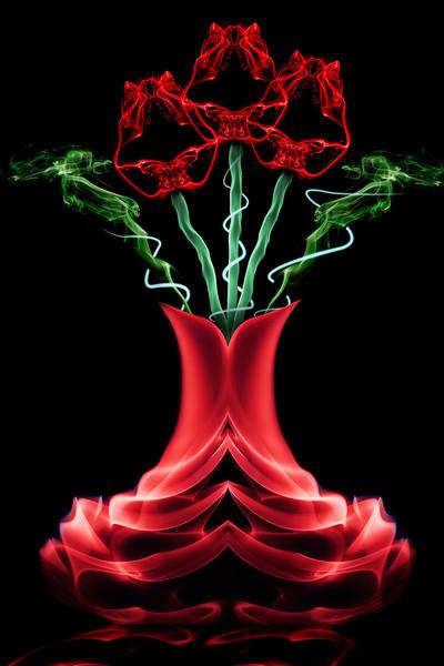 Smoke Roses