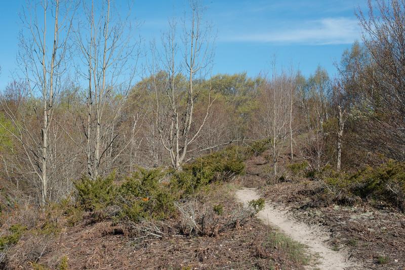 Spring Houdek Dune Hike-9845.jpg