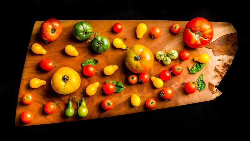 #tomatoes #summer #garden #homegrown #vegetables #foodphotography #latergram