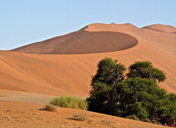 Sossusvlei, walk in the sand dunes, Namibia photo 2