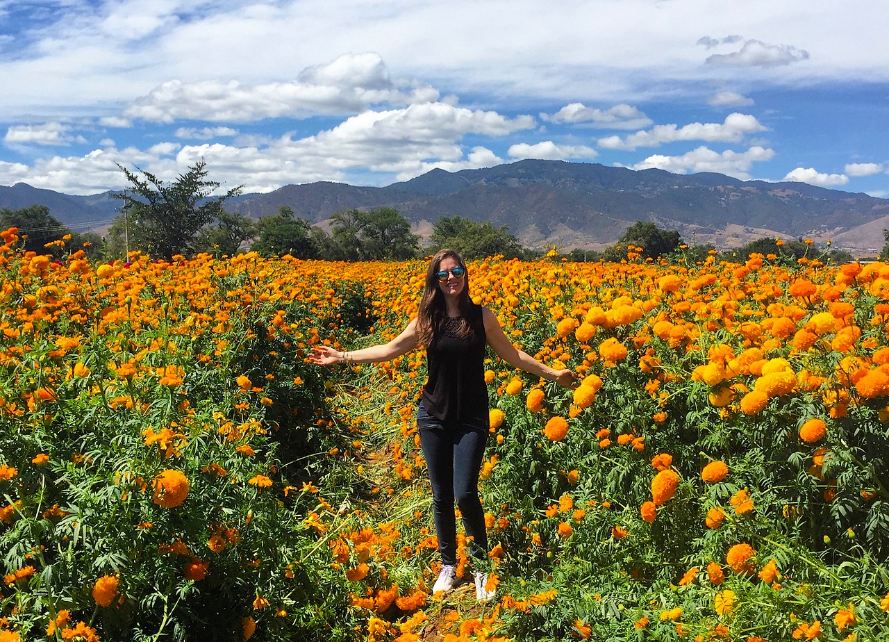 In a field of marigolds during Day of the Dead preparations in Oaxaca de Juarez