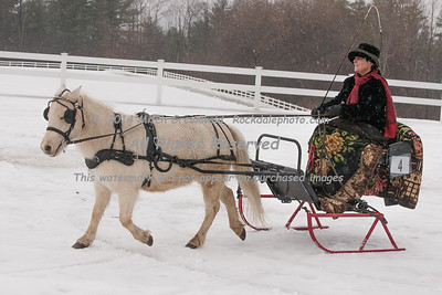 Colonial Carriage Sleigh Rally 1/18/15