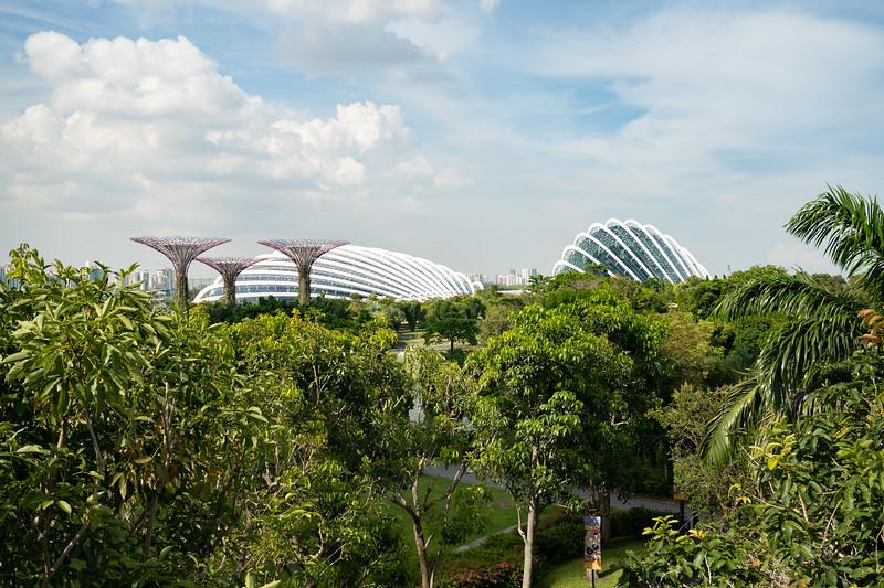 Singapore-19-083.jpg