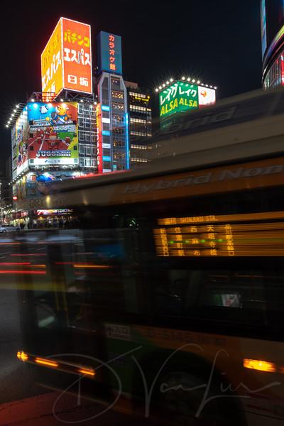 JapanPhotoTour20190204-32.jpg