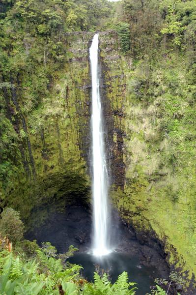 109- 20080409- Hawaii 15- Enroute to Hilo- Off-road Waterfalls DSC_2622.jpg