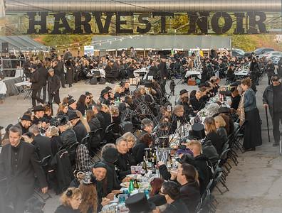 Harvest Noir 2015 5th anniversary edition