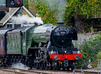 THE FLYING SCOTSMAN IN LINCOLN (2)