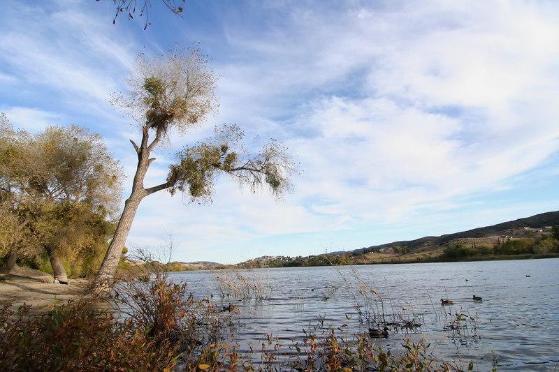 Lake Elizabeth 063_filtered.jpg
