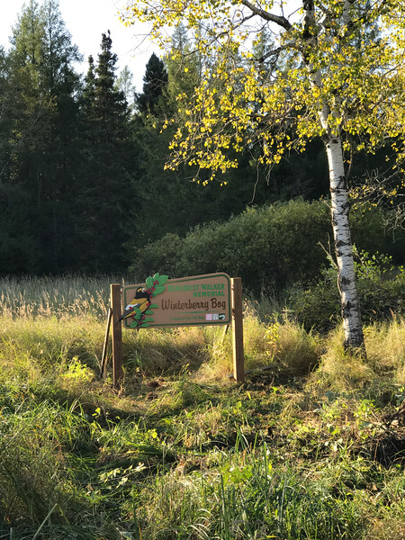 Winterberry Bog sign Murphy Road Sax-Zim Bog MN IMG_1160.jpg
