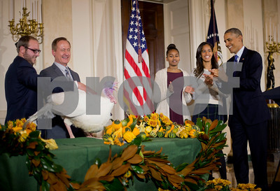 obama-defends-legal-authority-to-pardon-turkeys