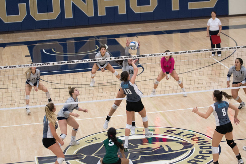 HPU Volleyball-93102.jpg